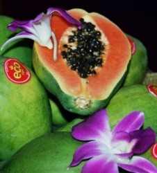 Buen pronóstico para frutos tropicales