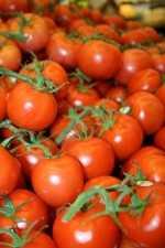 Mayor vida de anaquel para tomates