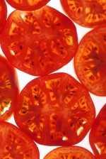 Mayor rendimiento para el tomate del futuro