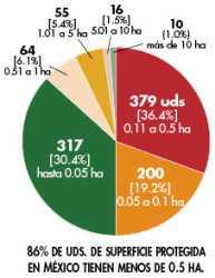Panorama mexicano: revisión de datos de la industria de invernadero en México