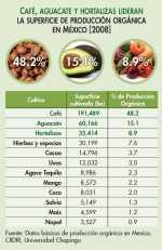 Los 12 cultivos más importantes en la producción orgánica