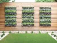 Cultiva plantas y hortalizas en estructuras verticales