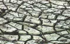 Sobrevive la sequía: análisis y recomendaciones