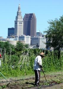 Urban Farm visits 2012 154