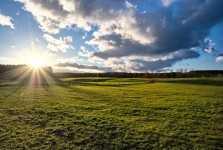 Panorama agrícola para 2013