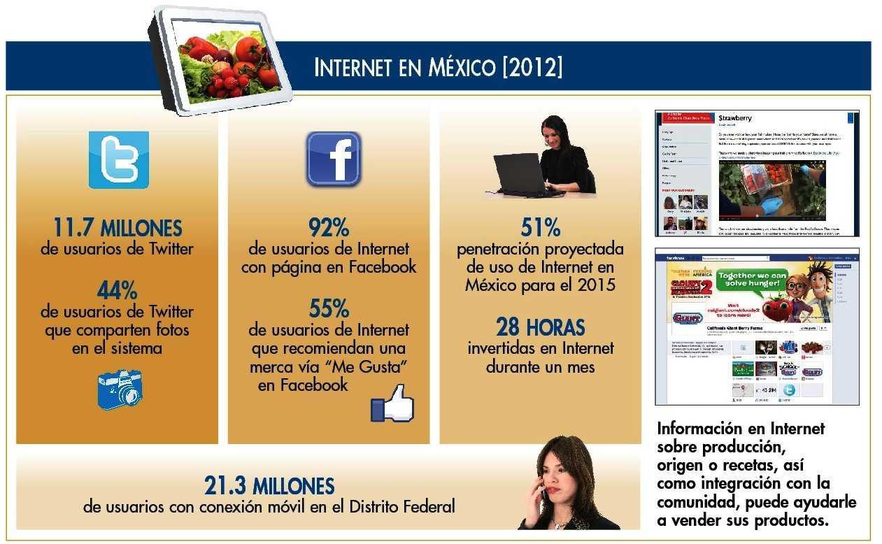 Internet en Mexico 2012