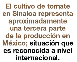 sinaloa4
