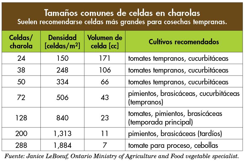 tamanos_celda
