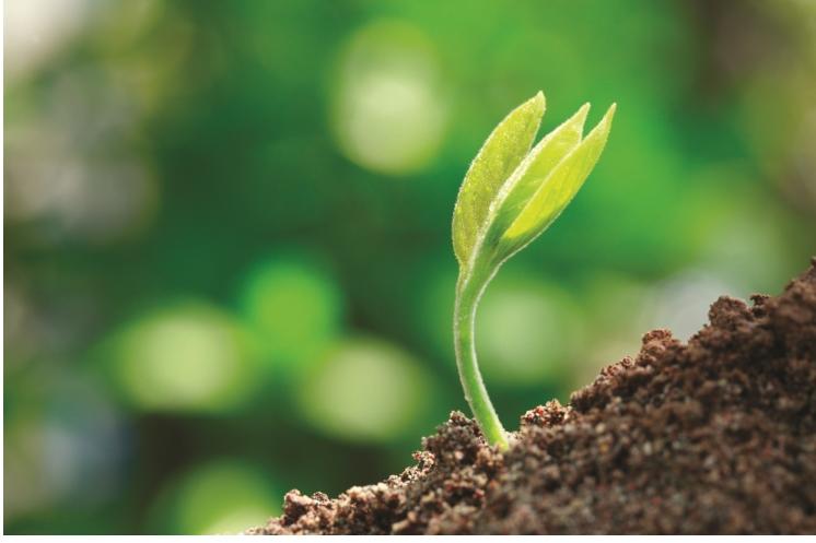 Sustentabilidad del suelo hortalizas - Robot que limpia el piso ...