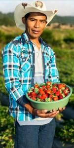 emiliano agricultor hondureno