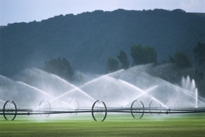 irrigation with mountains in background