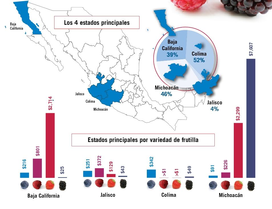 impulso de los berries mapa