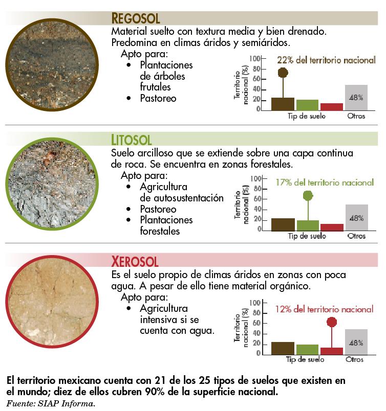 Recomendaciones para balancear el perfil de su suelo | Hortalizas