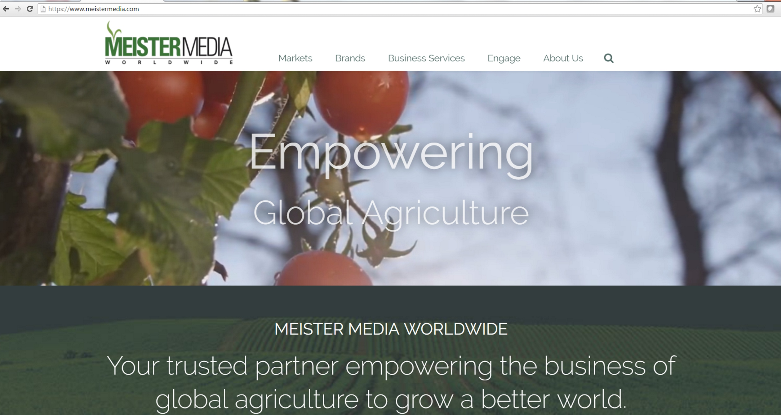 screenshot pdh meistermedia dot com tomatoes
