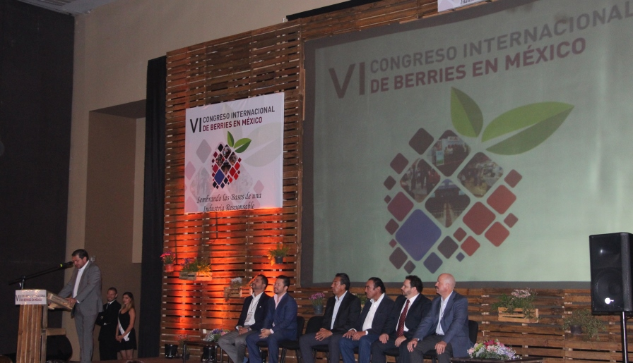 inauguracion aneberries