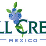 fc-mexico-logo