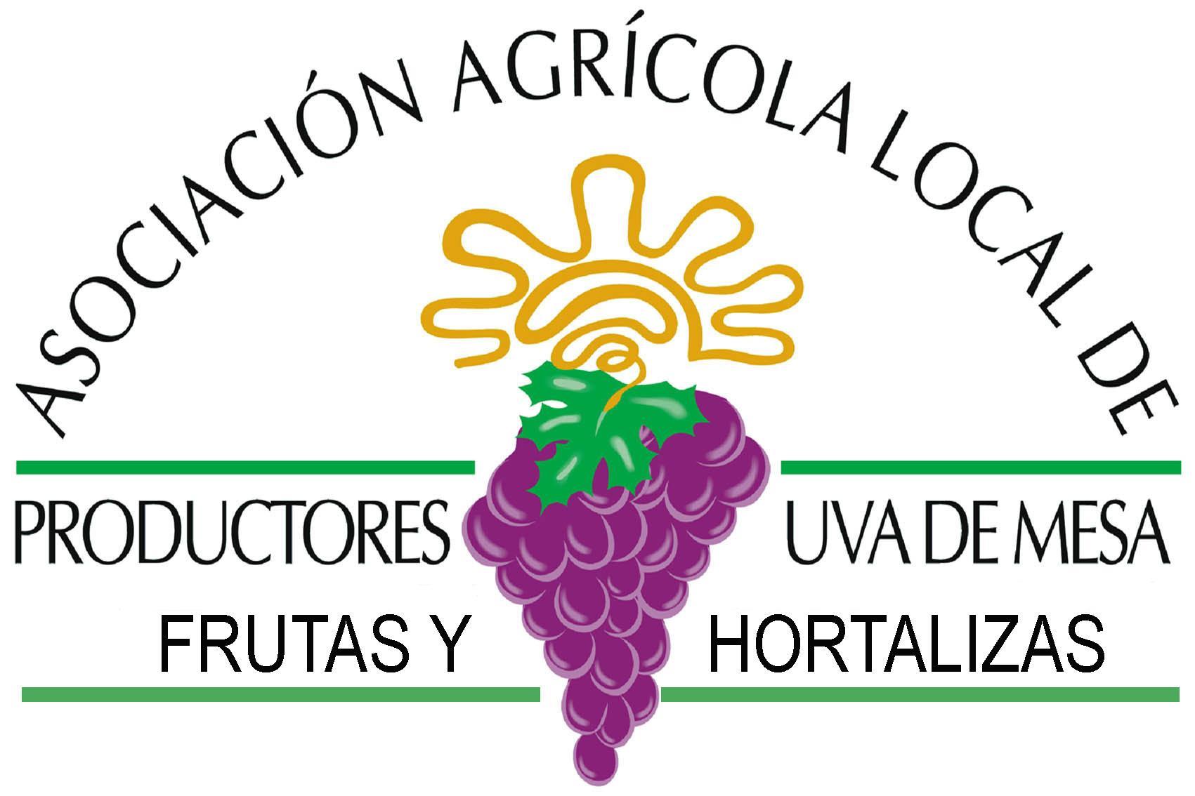 Asociaci n agr cola local de productores de uva de mesa for Asociacion de hortalizas