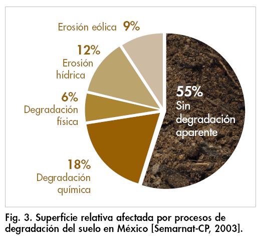 Suelo evita la degradaci n de tu insumo m s importante for Que elementos conforman el suelo